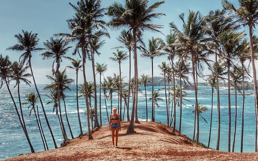 Woman standing by palm trees at beach