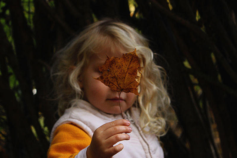 Close-up of cute girl holding leaf standing outdoors