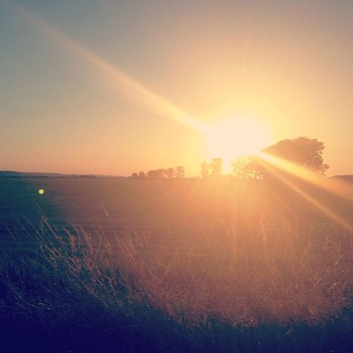 Sunset Summer Auleben Bestholiday countryside