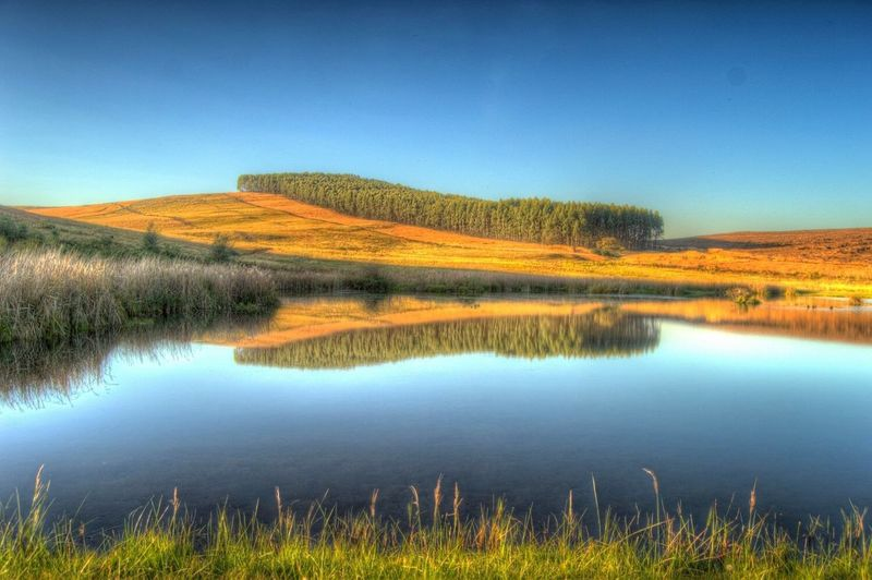Water Reflection Clear Sky Grass Beauty In Nature Nature Calm Countryside Outdoors Dam