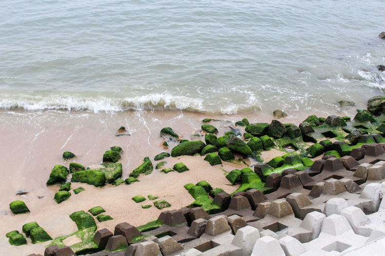 Beach Horizon Over Water Moss Outdoors Rock Sea Shore Stone Tranquil Scene Vacation Water Landscapes With WhiteWall