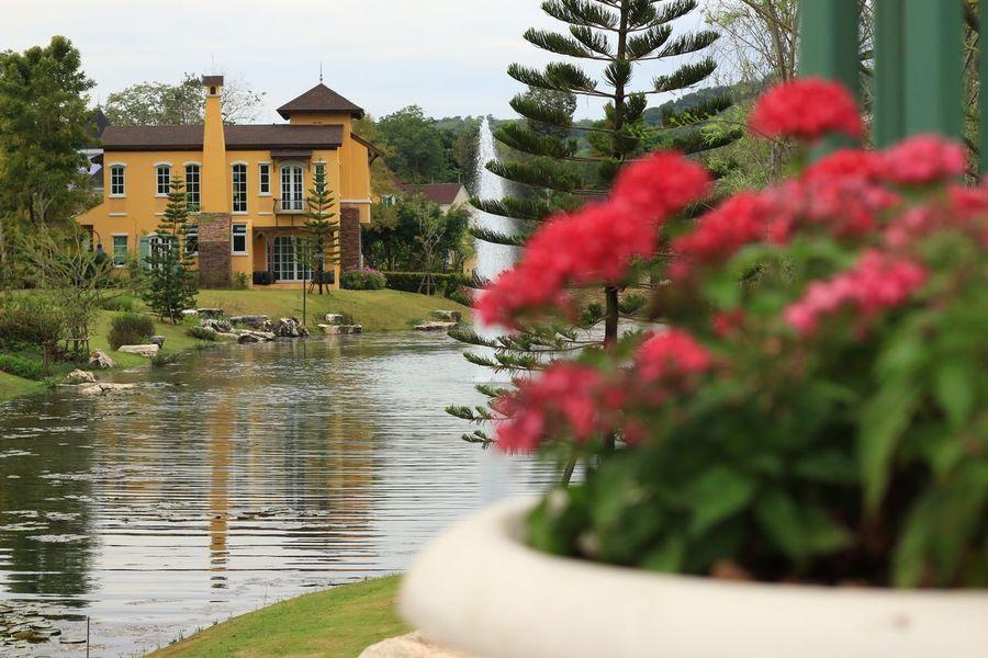 Landscape Evening Building Houses Colors