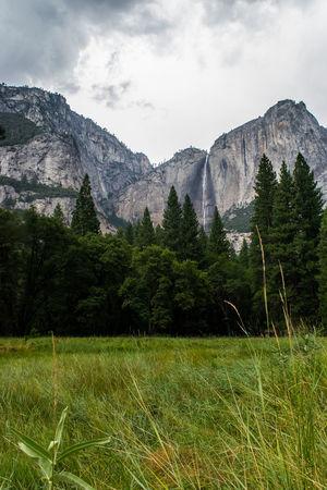 California ExploreEverything Half Dome Hiking Pine Wall Art Yosemite Yosemite National Park Yosemite Storm Yosemite Sunset Yosemite Falls Beauty In Nature Landscape Meadows Sunrise Tunnel View Tunnel View - Yosemite National Park Wall Decor Waterfall Yosemite Valley