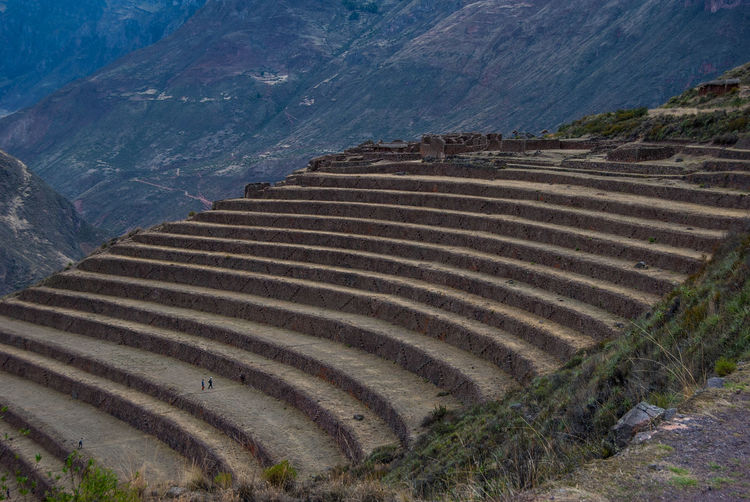 Terraced mountainside Peru Agriculture Beauty In Nature Day Field High Angle View Landscape Mountain Mountain Range Nature Outdoors Patchwork Landscape Rural Scene Scenics Terraced Field Tranquil Scene Tranquility