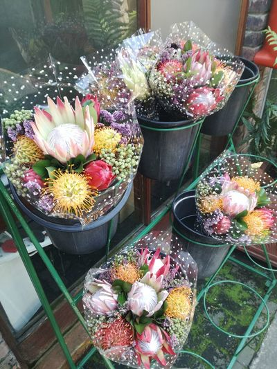Beauty Flower Freshness High Angle View Nature Flower Head Fresh Freshness Plants Bouquet Bouquet Of Flowers Fynbos South African Flora Flowers Beauty Beauty In Nature Bunch Of Flowers