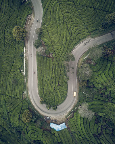 Life is never flat Drone  Dronephotography DJI Mavic Pro Dji Outdoor Photography Nature Nature Photography Wonderful Indonesia Outdoors JelajahIndonesiaku INDONESIA Bandung Folkgood Beauty In Nature Travel Travel Photography Tree Water Aerial View Agriculture Backgrounds Rural Scene Full Frame High Angle View Pattern Field Empty Road Country Road Countryside Road Marking Asphalt Roadways