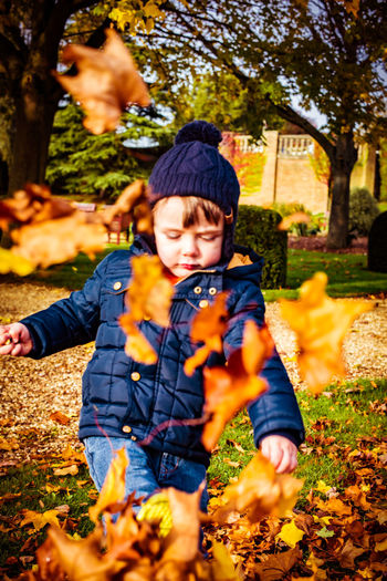 Autumn Autumn Colors Autumn Leaves Kicking Leaves Boy Child Fall Kicking Leaves Nature Outdoors Park