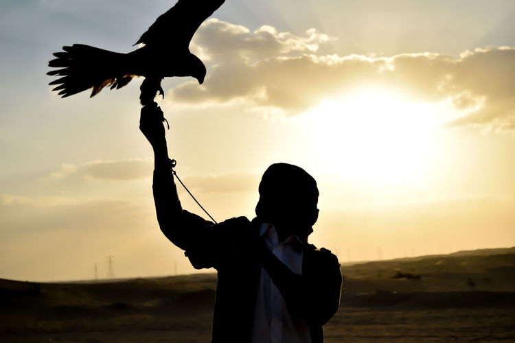 Man with eagle standing against sky during sunset