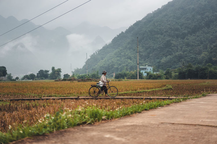 Man riding bicycle on field by road against sky
