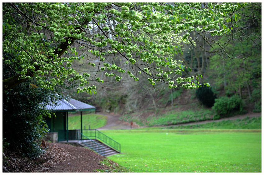 Angus Scenics Tranquility Freshness Green Color The Den Tourism Attractions Scenic Beauty Leisure Kirriemuir bandstand