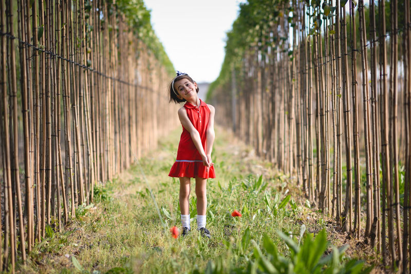 Little girl walking in nature field wearing beautiful red dress Day Front View Full Length Girl Grass Lifestyles Little Girl Looking At Camera Nature One Person Outdoors People Poplar Poplar Tree Portrait Real People Red Standing Tree