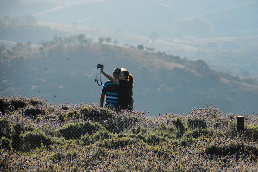 ezefer Beauty In Nature Cunha Day Landscape Lavanda Lavanda Field Lavandario Men Mountain Mountain View Mountains Nature One Man Only One Person Outdoors People Photography Themes Scenics Sky