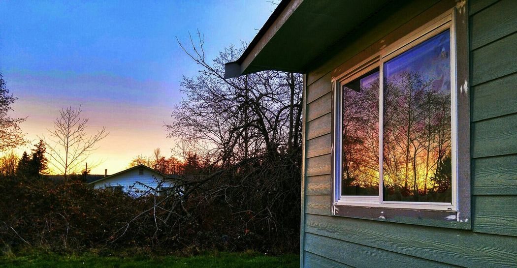 Inspecting new paint job and caught this reflection of sunset. From My Point Of View Reflection Beautiful Tree And Sky Behind View From My House Tulalip Bay Tulalip Indian Reservation Pacific Northwest  Sky Silhouettes Natures Textures Window Reflections From My Window Sunset Silhouettes Nature Gods Creation God's Canvas God's Handiwork  Textures And Surfaces New Painting In Progress Colors Colorful December Sky