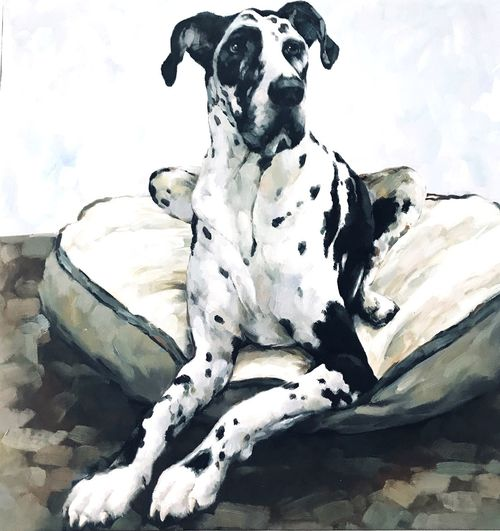 Art Balck&White Dogslife Canine Dog Pinting Art Domestic Pets