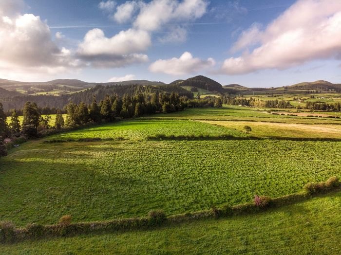 Flying to Lagoa do Congro Tourism DJI Mavic Air DJI X Eyeem Drone Photograph Portugal Azores Açores - São Miguel Tree Mountain Range Rural Scene No People Green Color Tranquil Scene Agriculture Nature Beauty In Nature Growth Mountain Land Field Environment Landscape Scenics - Nature Tranquility Sky Cloud - Sky Plant