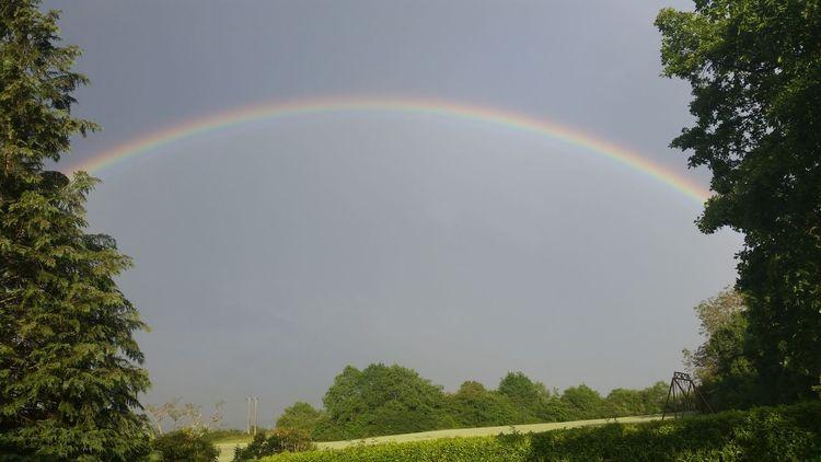 Rainbow <3 Magnifique Rainbow Arcenciel Garden Jardin