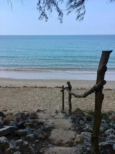 Sea Horizon Over Water Water Scenics Beach Nature Tranquil Scene Beauty In Nature Tranquility No People Sky Outdoors Blue Clear Sky Day Sand Tree Thailand Thailand_allshots