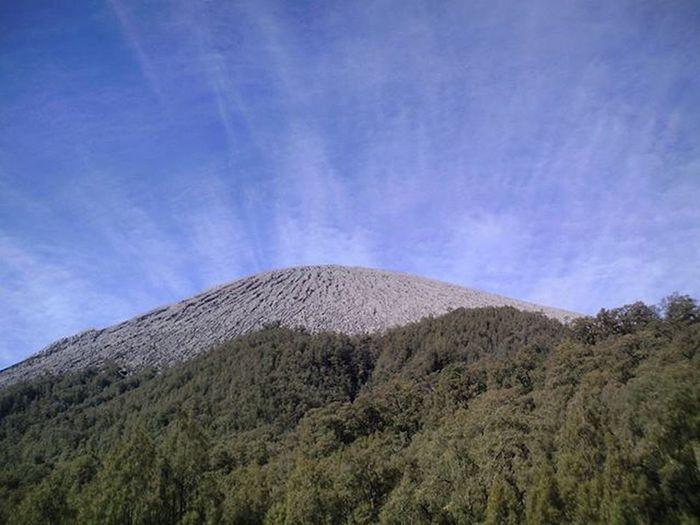 Berawan . . Langit , Awan , Puncakmahameru dan Pepohonan dilihat dari Kalimati , Gunung Semeru Jawatimur . . 2007, Kamerapocketgw Nature Landscape Mounts Camping Backcountry Sky