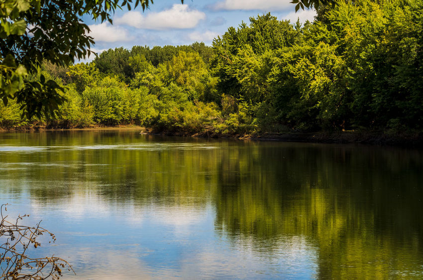 Beauty In Nature Day Forest Green Color Growth Idyllic Lake Nature No People Non-urban Scene Outdoors Plant Reflection Scenics - Nature Sky Tranquil Scene Tranquility Tree Water Waterfront