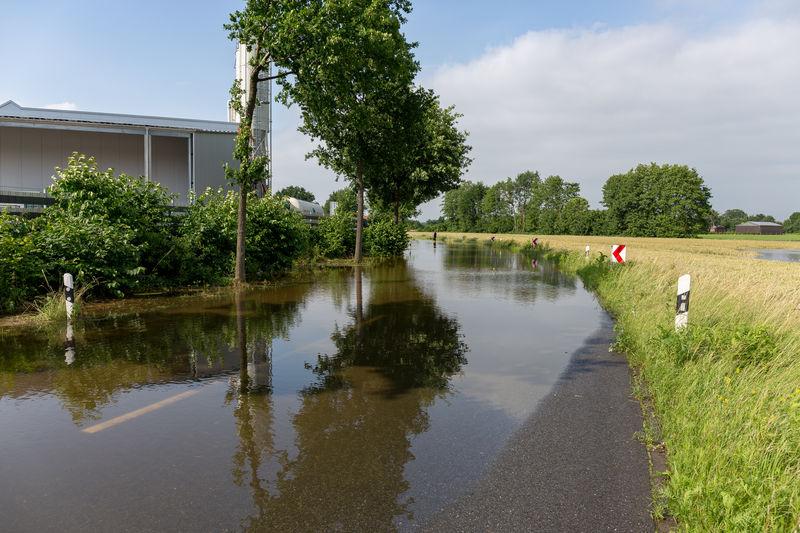 Flood Protection Flooded Flooding River High Water High Waters  Flood Flooting High Tide High Water Level Münsterland Rhede River Road Spate Water Wet Feet