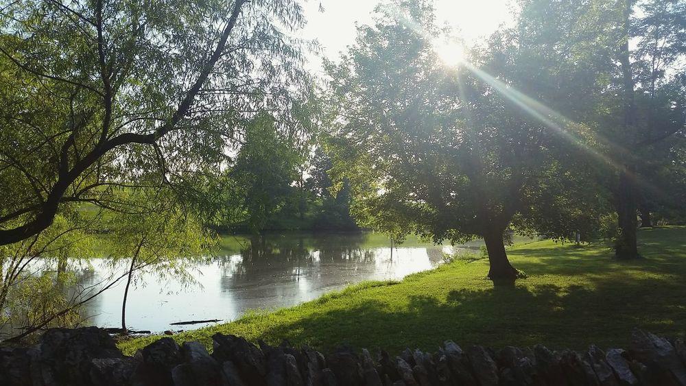 Sunlight Sun_collection Festival Farming Lake Water_collection Sun Glare ShakerWoods Kentucky  EyeEm Best Shots