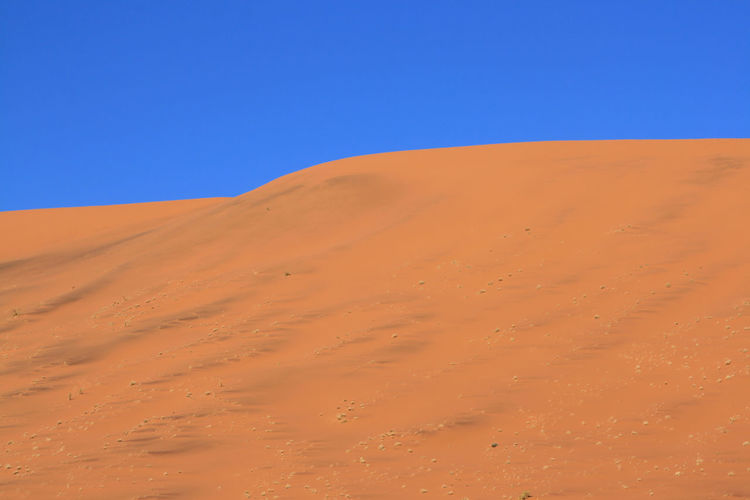 Africa Arid Arid Climate Beauty In Nature Blue Clear Sky Day Desert Extreme Terrain Horizon Over Land Landscape Namibia Nature No People Non-urban Scene Outdoors Physical Geography Remote Sand Sand Dune Scenics Solitude Tranquil Scene Tranquility