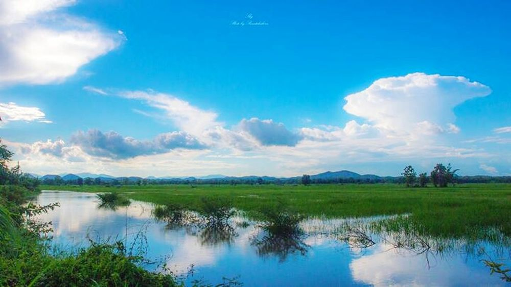 Relaxing Taking Photos Enjoying Life Happy Time Light Lampang | Thailand Sky Landscape Bluesky Clounds And Sky
