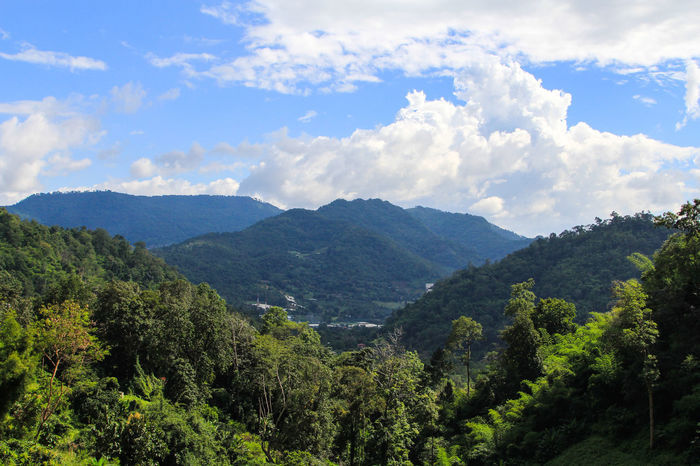 Amazing Chaing Mai Chaingmai Green Hill Landscape Landscape_Collection Mae Rim Maerim Mon Cham MONCHAM Mountain Mountains Nature Relaxing Royal Project Sky Sky And Clouds Thailand Travel Tree Unseen Unseenthailand
