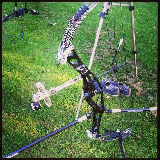 Hoyt Easton Archery Beiter Beestinger