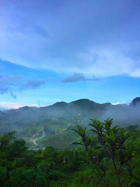 Mountain Nature Beauty In Nature Sky Scenics Mountain Range Day Landscape Outdoors Travel Destinations Tourism Scenery Cloud - Sky Fog Blue Sky Leaf Blue Osmeña Peak Cebu City, Philippines