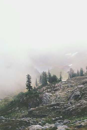 Nothing like a foggy day in the mountain ?? ... Mountain Trees Pinetrees On A Hike Fog Foggy Day Lake Nature Lagoon Getting Inspired