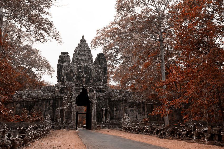 Ankor vat, Cambogia Travel Destinations Architecture Travel Built Structure History Tree Cultures Building Exterior Day Nature Tourism No People Outdoors Sky