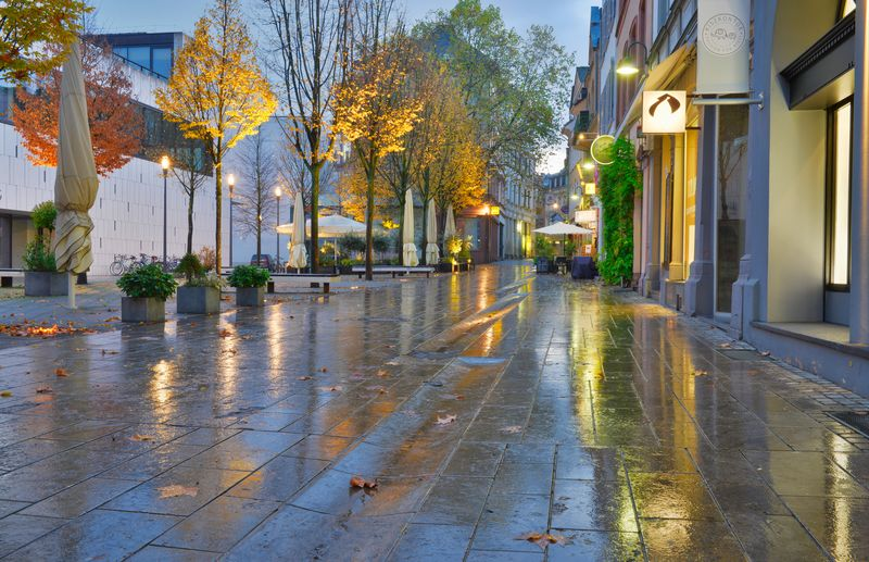 Architecture Autumn Building Building Exterior Built Structure City Day Footpath Nature No People Outdoors Plant Rain Rainy Season Residential District Road Sidewalk Street Tree Wet