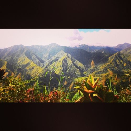 Race to Which Mountain Photogrid Asuszenphone5 Fieldman ? Gandangpinas Cordillera Instasize
