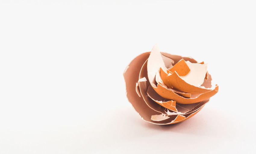 High angle view of broken egg against white background