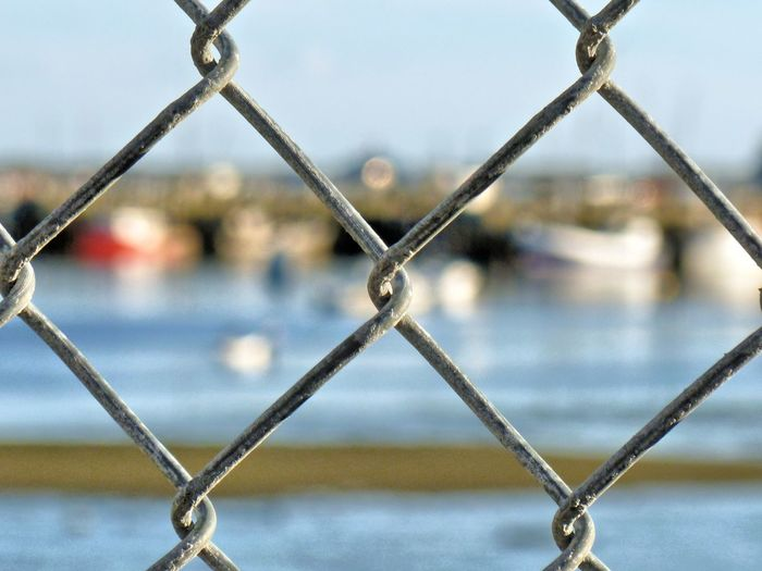 Chain link fence Barrier Boundaries Boundary Boundary Fence Chain Chain Link Chain Link Fence Chainlink Fence Close-up Danger Depth Of Field Fence Focus On Foreground Keep Out Metal No People Private Private Property Protection Rusty Safety Security Selective Focus Simplicity Textured