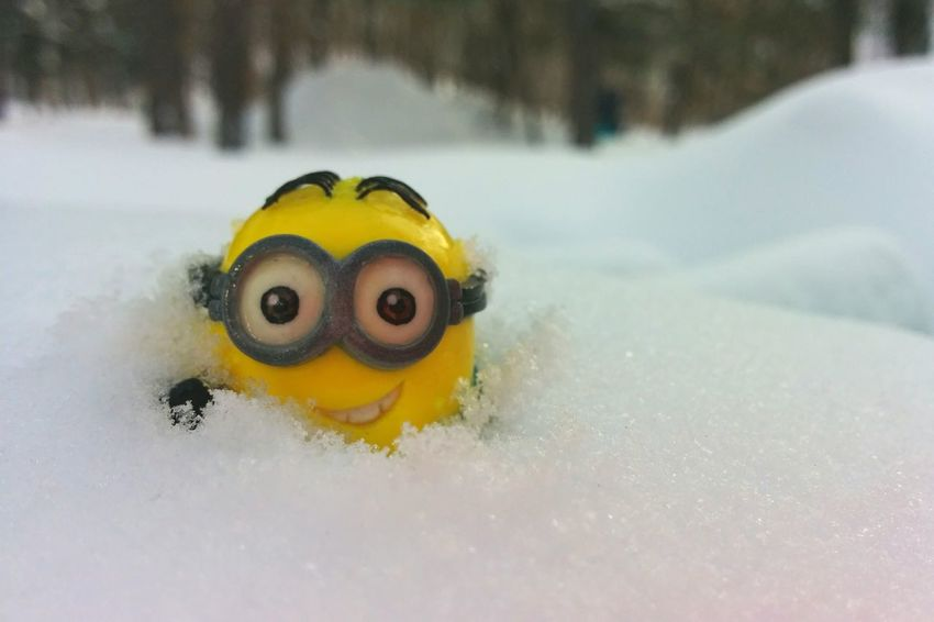 Dave's Adventures Minions Playing In The Snow