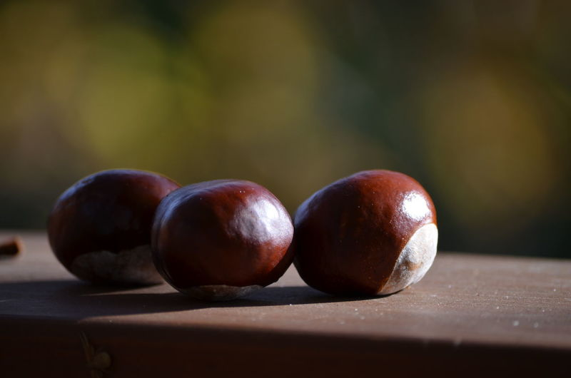 Close-up of chestnuts on table