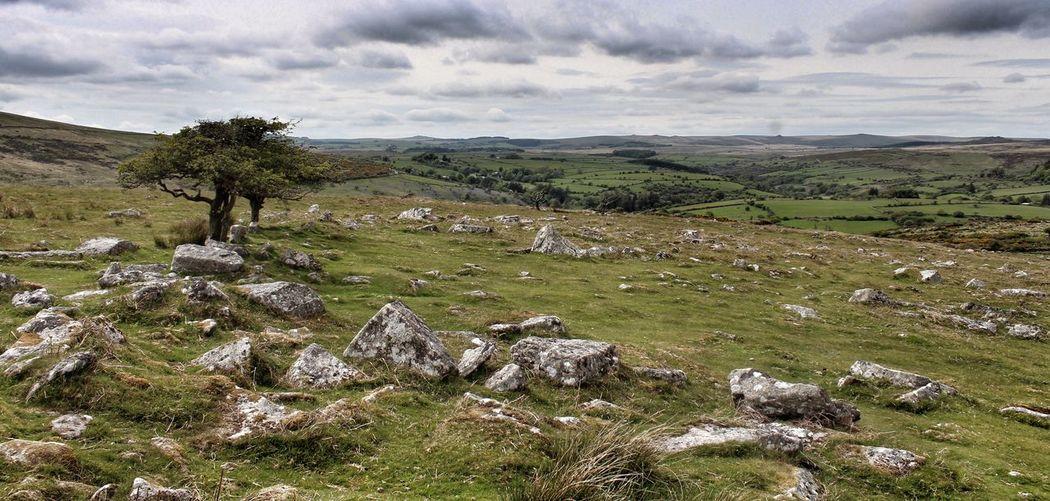 Dartmoor England United Kingdom Moor  Landscape_Collection Landscape