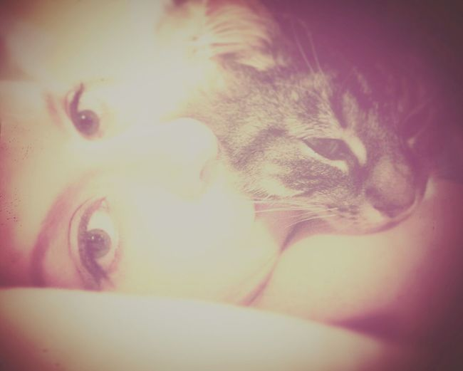Kitty love. I think he missed me. Kitty Cat Lovemycat Crazycatlady Hemissedme