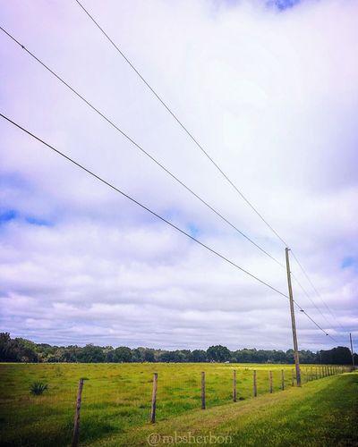 Nature Florida Eye4photography  EyeEm Nature Lover Landscape Landscape_Collection Farm Clouds Sky Backroads