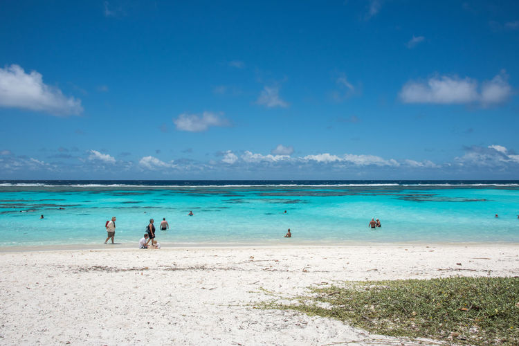 YEJELE BEACH,MARE,NEW CALEDONIA-DECEMBER 3,2016: Tourists on excursion at Yejele Beach in New Caledonia. Excursion Ocean View Snorkeling Stunning Swimming Tranquility Travel Tropical Paradise Walking Around Azure Beach Blue Exploration Horizon Over Water Idyllic Lifestyles Majestic Outdoor Pursuit Pacific Ocean Reef Sand Scenics Sea Shore Yejele