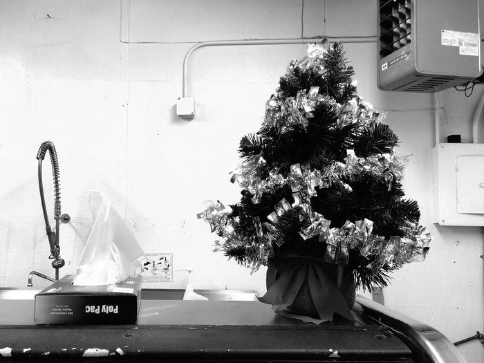 Christmas Tree Black & White Documentary