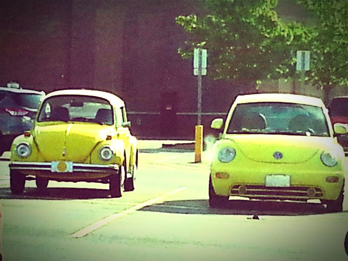 Yellow Old Cars ❤ Volkswagon VW Beetle At Walmart Parking Lot
