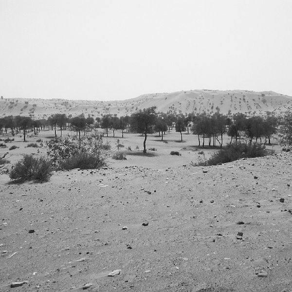 Roadtrip Sight UAE Umalquwain Desert