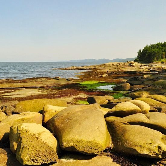 Wandering the sandstone shorelines Gulfislands Pnwcollective WestCoast Comewithme