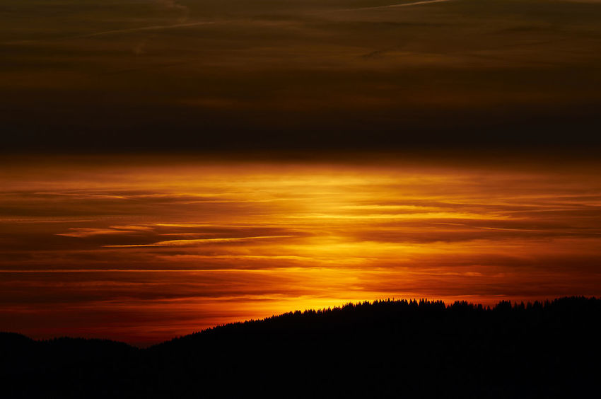 Backgrounds Cloud - Sky Nature No People Orange Color Outdoors Red Color Scenics Silhouette Sky Sunset Top Perspective Tree Yellow Color Burgberger_Hoernle_2017_09_10561