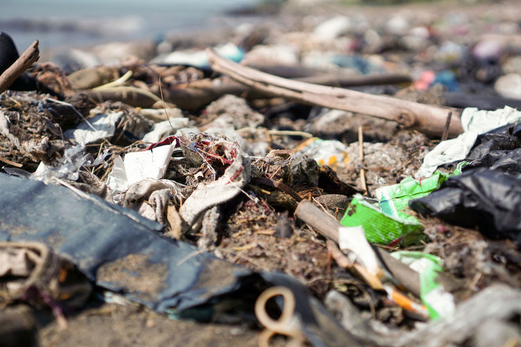 Close-up of garbage on shore