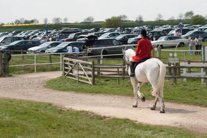 Rear View Of Jockey Riding White Horse