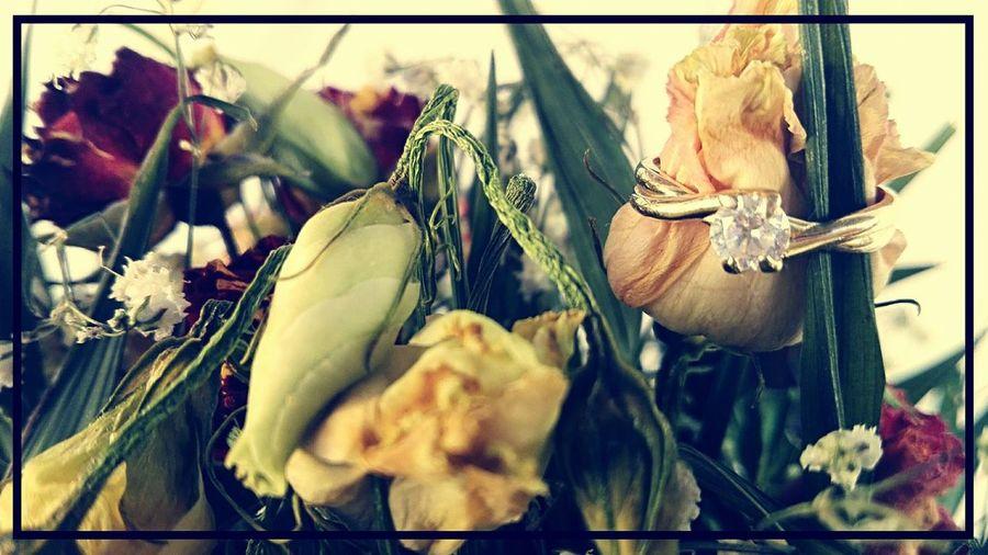 Close-up Engagement Ring Flower Flowers & Ring Freshness Love ♥ Nature Rings 💍
